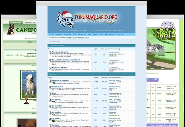 créer forum animaux