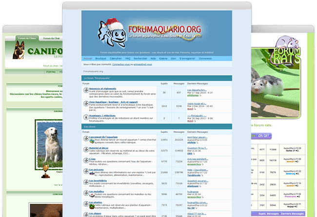 Cum se creeaza un forum despre animale